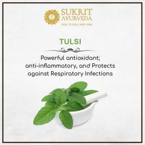 Tulsi for Immunity