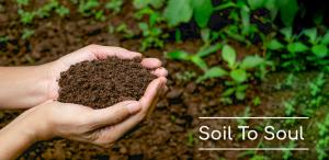 Soil To Soul - Sukrit Aurveda